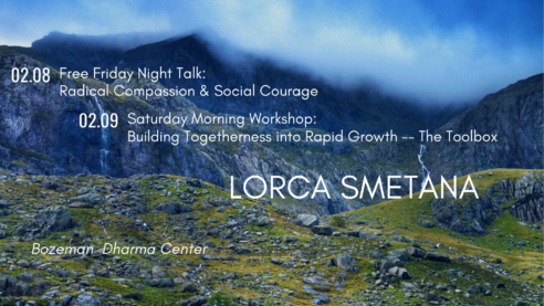Friday Night Free Talk: Radical Compassion & Social Courage @ Bozeman Dharma Center